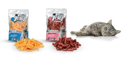 caliba-joy-cat-for-web